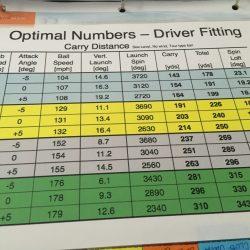 Driver Fitting Sarasota