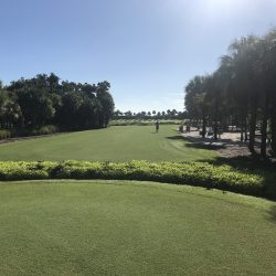 Pick The Right Golf Shot